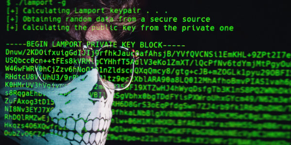 National Guard called in to thwart cyberattacks aimed at small government offices across the state in recent weeks…