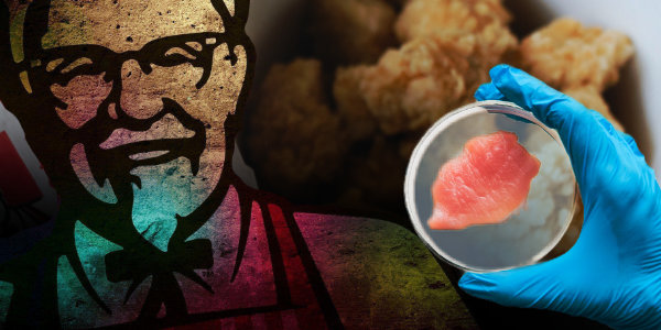 KFC Is Working on 3D Printed, Lab-Grown Chicken Nuggets…